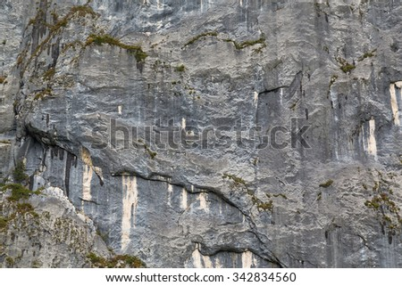 Closeup to a sheer limestone rock face in the Salzkammergut part of Austria. There is space for text.