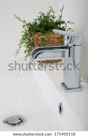 Closeup view of a modern hand basin in a restroom with a stainless steel or chrome metallic tap fitting, retractable plug and green potted plant