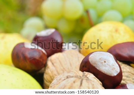 Closeup view of autumn fruits for background - stock photo