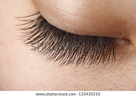 Closeup view of eye lashes - stock photo