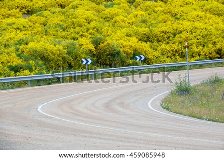 Closeup view of road curve with barrier and flowery bush