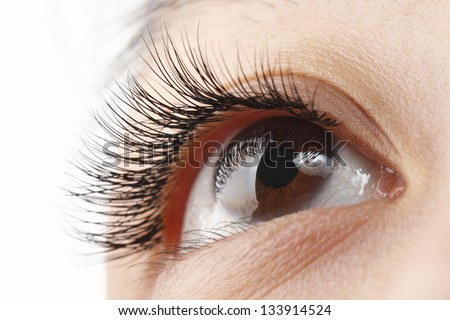Closeup view of woman eye