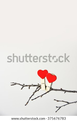 Clothes pins, with red heart on a bough.