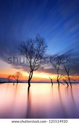 Cloud movement with dead trees on the dam at sunrise - stock photo