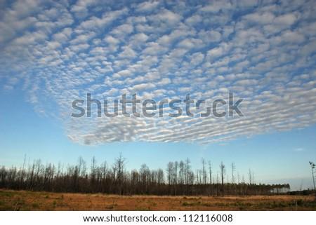 cloud patterns - stock photo