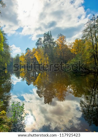 Cloud reflection in a forest lake of Pushcha-Vodytsia, Ukraine