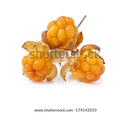 cloudberry close-up isolated on white background  - stock photo