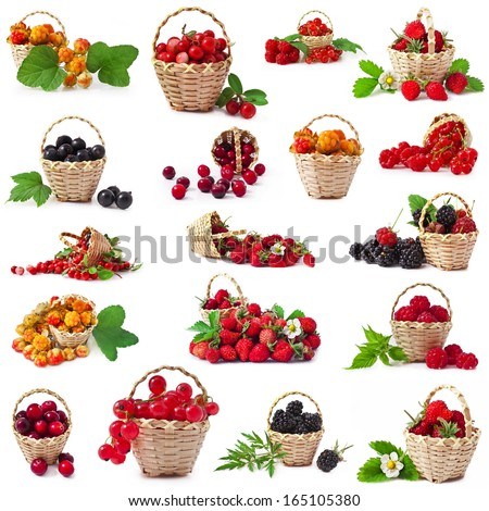Cloudberry, cranberry, blackberry, raspberry, wild strawberry, red currant, black currant in the basket with leaves isolated on white background, collection - stock photo