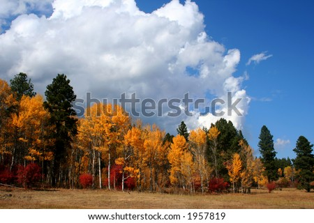 Clouds and color, Autumn in Valley County Idaho