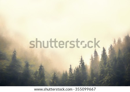 Clouds and fog over pine tree forest painted style