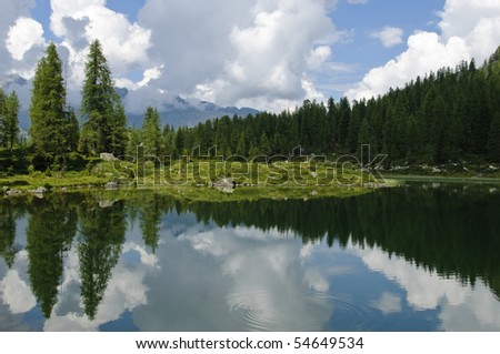 Clouds and pine trees reflecting in the still water of S. Giuliano lake in the Italian Alps. Photo taken on the 16th of August, 2009.