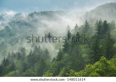 Clouds are rolling through after the rain in the Great Smoky Mountains National Park in Western North Carolina.