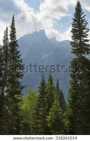 Clouds, mountains and pine forest, Teton Mountains, Jackson Hole, Wyoming, vertical. - stock photo
