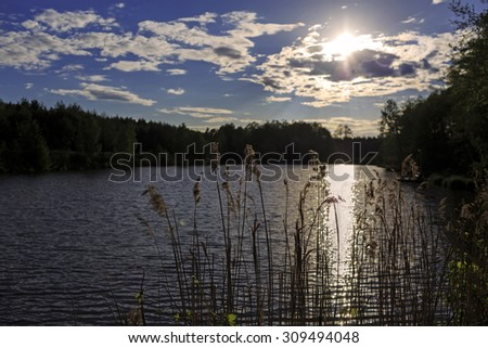 Cloudscape above the lake with reed and trees at sunset