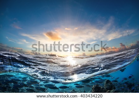 Cloudy Beautiful sunset in sea water. Design template separated by waterline. - stock photo