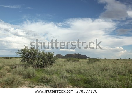 Cloudy blue sky over high-desert grasslands scenic in late part of day/Semi-Desert Grassy Countryside with Late Afternoon Cloudy Blue Sky/Vista of rural grassy area with clouds in blue sky      - stock photo