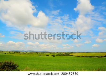 cloudy sky over a green meadow in sardinia, Italy