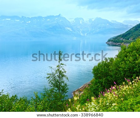 Cloudy summer view over Glomfjorden, Nordland, Norway - stock photo