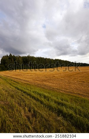 cloudy weather   - stock photo