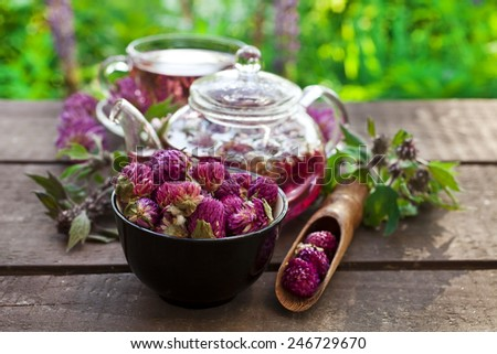 clover flower tea in the glass cup and teapot on a wooden table and Leonurus herb - stock photo
