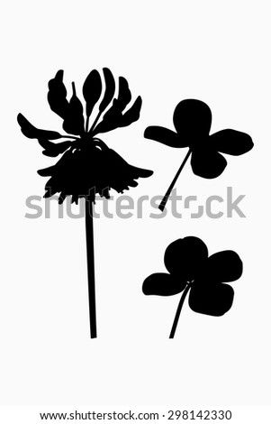 Clover flower with cloverleaf - black silhouette - illustration - stock photo