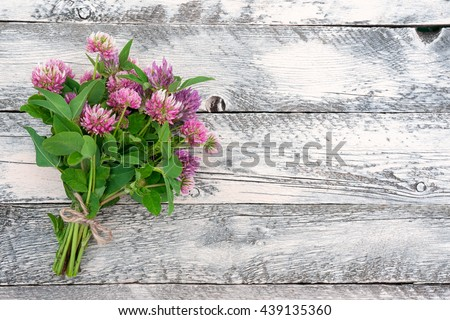 Clover flowers on wooden background. Beautiful wildflower bouquet. Top view. - stock photo