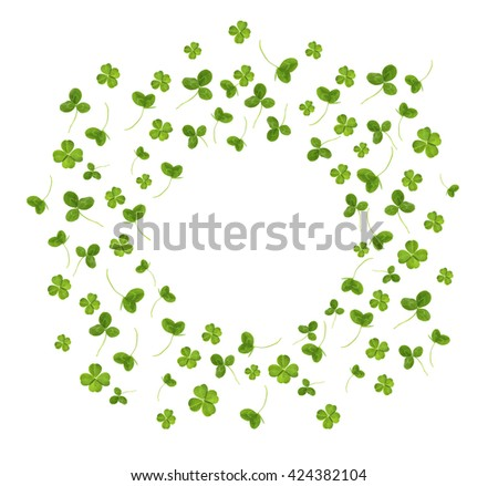Clover leaves, isolated on white - stock photo