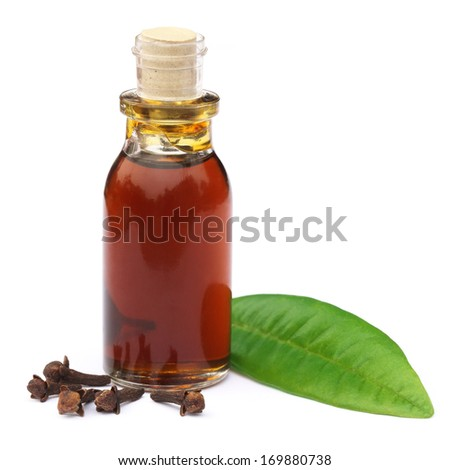 Cloves and leaf with essential oil over white background - stock photo
