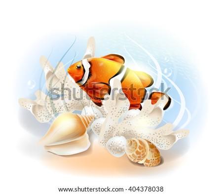 Clownfish in the sea. Illustration of the tropical underwater world. Aquarium fish. - stock photo