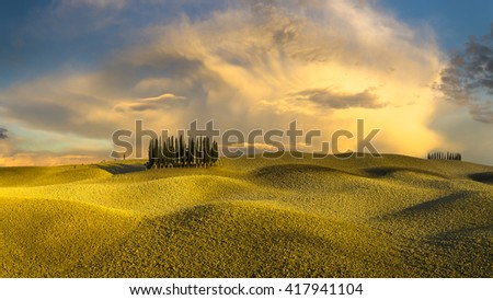 Clumps of cypress trees on autumn field in Tuscany - stock photo