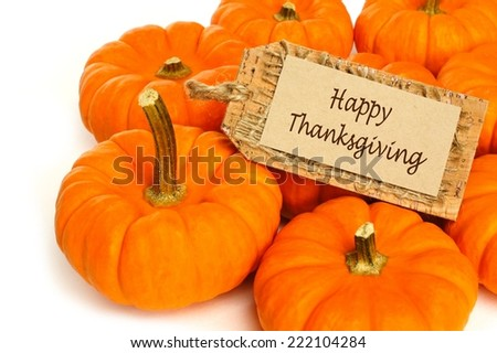 Cluster of mini pumpkins with Happy Thanksgiving tag on a white background - stock photo