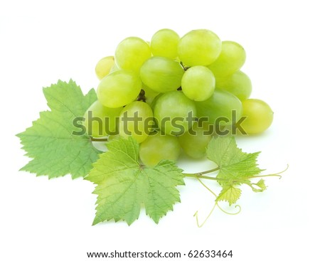 Cluster of white grapes with a branch of leaves on a white background