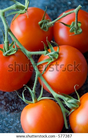 Clustered tomatoes - stock photo