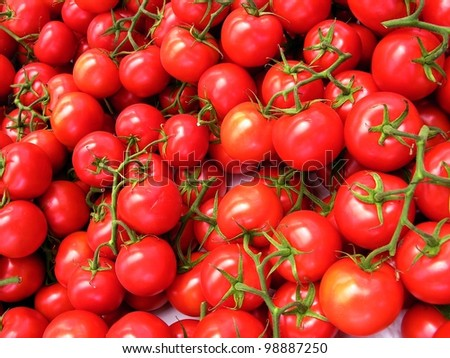 clusters of red tomatoes