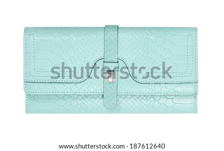 clutch  isolated on white background - stock photo