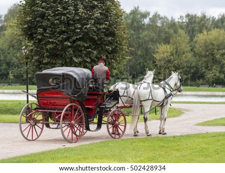 Coachman drives carriage with two white horses. Russia Moscow.