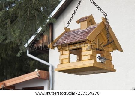 Coal Tit on a garden bird feeder, blurred background - stock photo