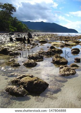 Coast, Daintree Rainforest, Queensland, Australia - stock photo
