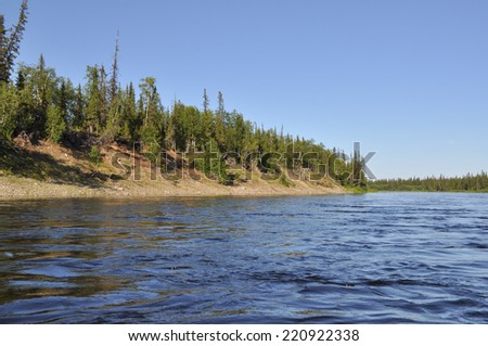 Coast Northern boreal river. River Polar Urals on a Sunny summer day.