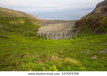 coast of Barents sea with bay - stock photo