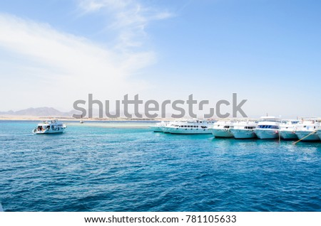 coast of Egypt at the Red Sea