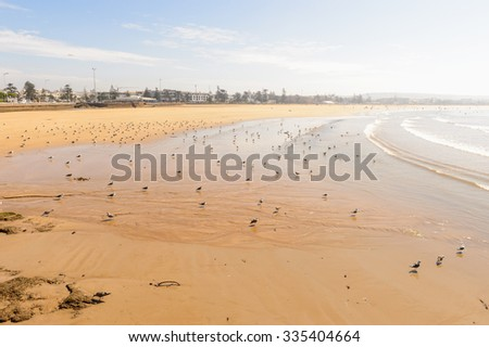 Coast of the Atlantic ocean, near Essaouira, Morocco - stock photo