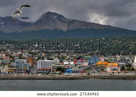 Coast of Ushuaia and the sea bird - stock photo