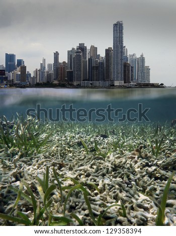 Coastal development issues, above and below water surface with skyscrapers in pollution cloud and underwater a coral reef destroyed - stock photo