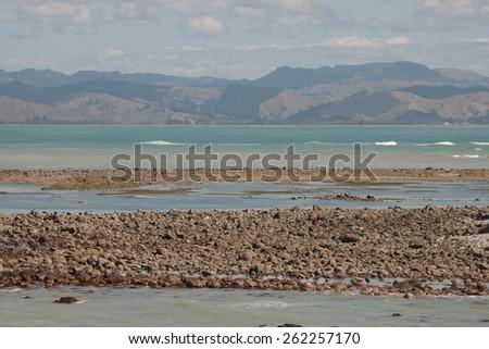 coastal erosion and rocky coastline, Gisborne, New Zealand  - stock photo