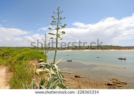 Coastline near Milfontes with Praia das Furnas Beach, Alentejo Portugal - stock photo