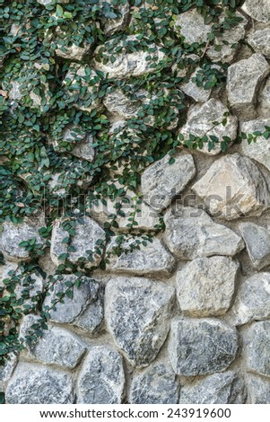 Coatbuttons on stone wall ,nature background - stock photo