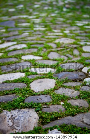 cobbles with moss on a pavement in an old city - stock photo
