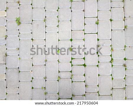 Cobblestone paving. - stock photo