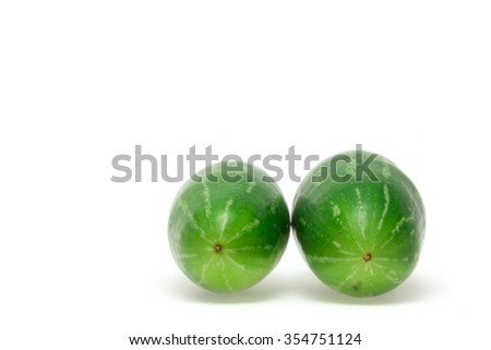 Coccinia grandis raw green on a white background. Vegetables that produce all season